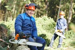 Εργαζόμενος υλοτόμων με το αλυσιδοπρίονο στο δάσος Στοκ εικόνα με δικαίωμα ελεύθερης χρήσης