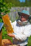 Εργαζόμενο apiarist σε μια εποχή άνοιξης Στοκ Εικόνες
