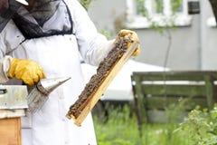 Εργαζόμενο apiarist Στοκ φωτογραφίες με δικαίωμα ελεύθερης χρήσης