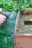Εργαζόμενο apiarist Στοκ Φωτογραφίες
