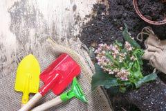 Εργαλεία κηπουρικής με τα λουλούδια και το χώμα Στοκ φωτογραφία με δικαίωμα ελεύθερης χρήσης