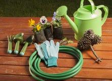 Εργαλεία κηπουρικής στη χλόη στον κήπο Στοκ εικόνες με δικαίωμα ελεύθερης χρήσης