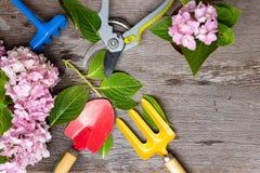 Εργαλεία κηπουρικής στο βρώμικο ξύλινο υπόβαθρο grunge Στοκ φωτογραφίες με δικαίωμα ελεύθερης χρήσης