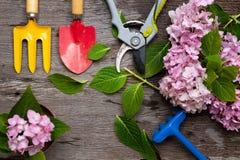 Εργαλεία κηπουρικής στο βρώμικο ξύλινο υπόβαθρο grunge Στοκ φωτογραφία με δικαίωμα ελεύθερης χρήσης