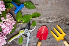 Εργαλεία κηπουρικής στο βρώμικο ξύλινο υπόβαθρο grunge Στοκ Εικόνες