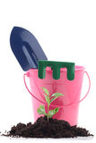εργαλεία κηπουρικής Στοκ Εικόνα