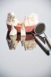 εργαλεία οδοντιάτρων Στοκ Εικόνα