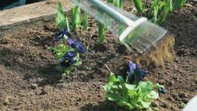 Εργασία για το έδαφος με μια τσουγκράνα φιλμ μικρού μήκους