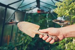 Εργασία για το φυτικό κήπο Στοκ Φωτογραφίες