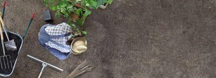 Εργασία κηπουρικής ατόμων στη θέση φυτικών κήπων εγκαταστάσεις στο έδαφος έτσι ώστε μπορεί να αυξηθεί, κοντά wheelbarrow στο σύνο στοκ φωτογραφίες με δικαίωμα ελεύθερης χρήσης