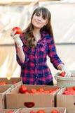 Εργασία με τα λαχανικά Στοκ Φωτογραφία