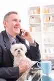 Εργασία με το σκυλί στο γραφείο Στοκ Εικόνες