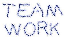 εργασία ομάδων μυρμηγκιών Στοκ Φωτογραφίες