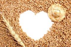 Εργασία, σιτάρι και αγάπη αγροτών Προετοιμασία για μια κάρτα υπό μορφή καρδιάς του σίτου Πλαίσιο με το διάστημα αντιγράφων Αυτί σ στοκ φωτογραφία με δικαίωμα ελεύθερης χρήσης