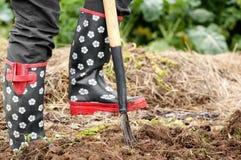 Εργασία στον κήπο Στοκ φωτογραφία με δικαίωμα ελεύθερης χρήσης