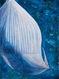 Εργασία τέχνης Spinnaker άνωθεν στοκ εικόνα με δικαίωμα ελεύθερης χρήσης