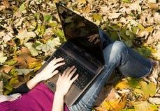εργασία φύσης υπολογισ Στοκ Εικόνες
