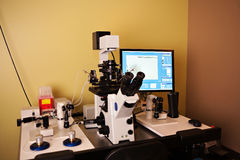 εργασία vitro σταθμών εργαστ&eta Στοκ φωτογραφία με δικαίωμα ελεύθερης χρήσης