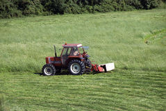 εργασίες γεωργίας Στοκ Φωτογραφίες