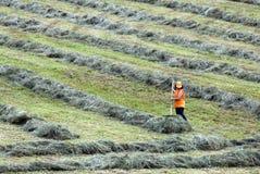 εργασίες γεωργίας Στοκ εικόνα με δικαίωμα ελεύθερης χρήσης