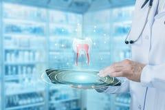 Εργασίες γιατρών με το πρότυπο δοντιών στην ταμπλέτα Στοκ Εικόνες