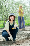 Εργασίες γυναικών στον κήπο την άνοιξη Στοκ εικόνα με δικαίωμα ελεύθερης χρήσης