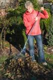 εργασίες κήπων φθινοπώρο&u Στοκ εικόνα με δικαίωμα ελεύθερης χρήσης