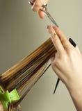 εργασίες hairstylist Στοκ εικόνα με δικαίωμα ελεύθερης χρήσης