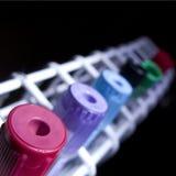 εργαστηριακά δείγματα Στοκ εικόνα με δικαίωμα ελεύθερης χρήσης