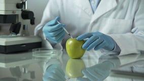 Εργαστηριακοί εργαζόμενοι που διεξάγουν την έρευνα για τα φρούτα από τα τοπικά και ξένα αγροκτήματα απόθεμα βίντεο