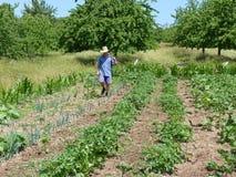Εργατικός αγρότης στοκ φωτογραφίες με δικαίωμα ελεύθερης χρήσης