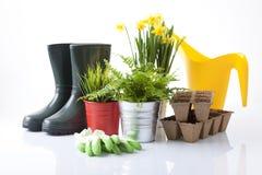 εργαλεία άνοιξη κήπων λουλουδιών Στοκ Εικόνα