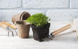 εργαλεία άνοιξη κήπων λουλουδιών Στοκ εικόνα με δικαίωμα ελεύθερης χρήσης