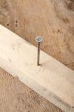 Εργαλεία Ένα σφυρί και καρφιά στο ξύλινο υπόβαθρο ready work Στοκ φωτογραφίες με δικαίωμα ελεύθερης χρήσης