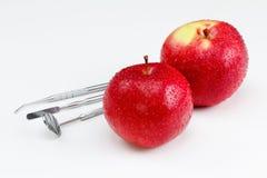 Εργαλεία για την οδοντικές θεραπεία και τη διάγνωση Apple Στοκ Εικόνες