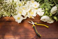 Εργαλεία, εγκαταστάσεις και χώμα κηπουρικής στον εκλεκτής ποιότητας ξύλινο πίνακα Άνοιξη στο υπόβαθρο έννοιας κήπων με το διάστημ Στοκ φωτογραφίες με δικαίωμα ελεύθερης χρήσης