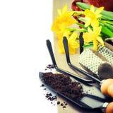 Εργαλεία και άνοιξη κήπων daffodils Στοκ Εικόνες