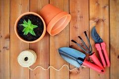 Εργαλεία και αντικείμενα κηπουρικής στο παλαιό ξύλινο υπόβαθρο Στοκ Εικόνα