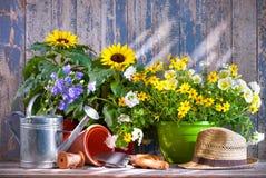 Εργαλεία και λουλούδια κηπουρικής στο πεζούλι Στοκ εικόνες με δικαίωμα ελεύθερης χρήσης
