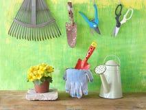 εργαλεία και λουλούδι κήπων Στοκ Εικόνα