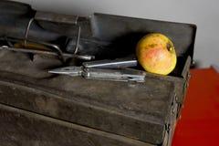 Εργαλεία και Apple χεριών Στοκ Εικόνα