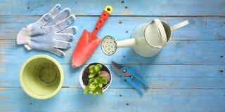 Εργαλεία κηπουρικής και νέο λουλούδι υάκινθων Στοκ Φωτογραφίες