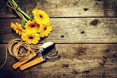 Εργαλεία κηπουρικής, λουλούδια, γάντια σχοινιών, βουρτσών και κηπουρικής επάνω Στοκ Φωτογραφίες