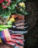 Εργαλεία κηπουρικής σε ένα υπόβαθρο στο έδαφος Στοκ εικόνα με δικαίωμα ελεύθερης χρήσης