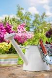 Εργαλεία κηπουρικής στον κήπο Στοκ Εικόνες