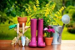 Εργαλεία κηπουρικής στον ξύλινο πίνακα και το πράσινο υπόβαθρο Στοκ Εικόνα