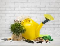 Εργαλεία κηπουρικής στον ξύλινο πίνακα πέρα από το άσπρο υπόβαθρο τουβλότοιχος στοκ εικόνα με δικαίωμα ελεύθερης χρήσης