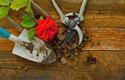 Εργαλεία κηπουρικής στους αγροτικούς ξύλινους πίνακες Στοκ φωτογραφίες με δικαίωμα ελεύθερης χρήσης