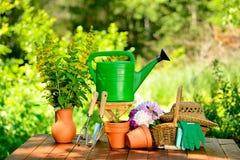 Εργαλεία κηπουρικής στο πράσινες υπόβαθρο και τη χλόη Στοκ Φωτογραφίες