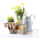 εργαλεία κηπουρικής Στοκ εικόνες με δικαίωμα ελεύθερης χρήσης